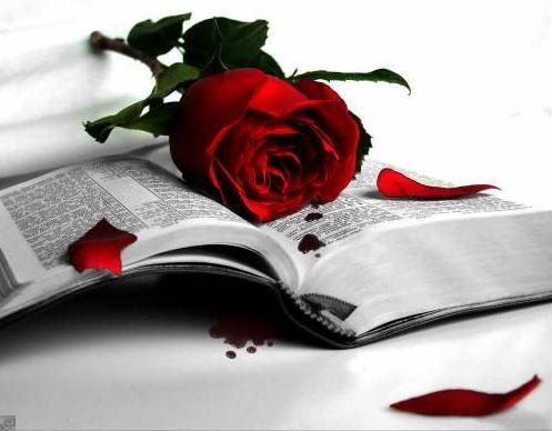 El amor para toda la vida: un mito o una realidad