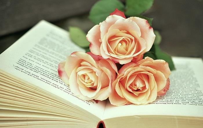 Los mejores libros para buscar pareja