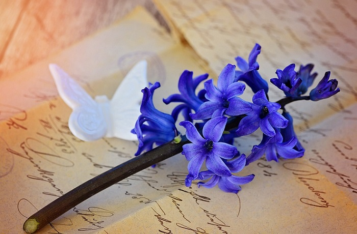 Escribir cartas de amor de ensueño