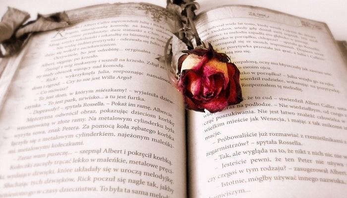 Libros de San Valentín