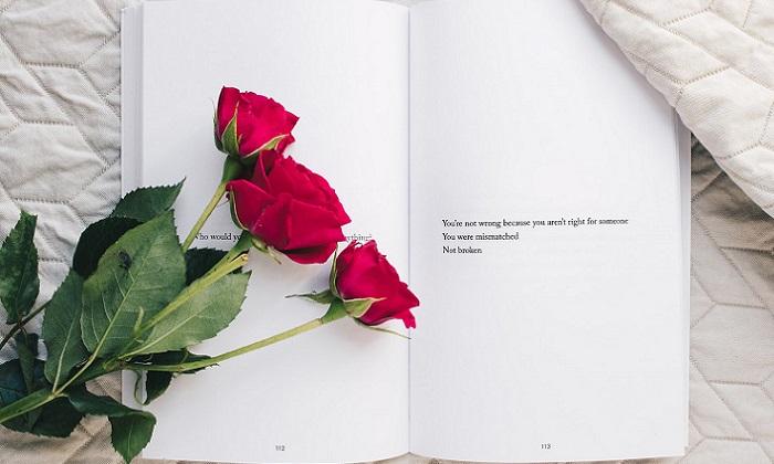 Libros de amor para San Valentín