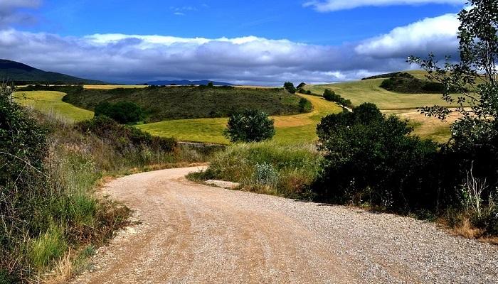 Camino de Santiago en soledad