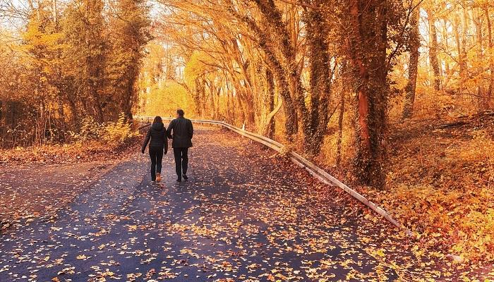 7 frases bonitas de amor para decir te quiero